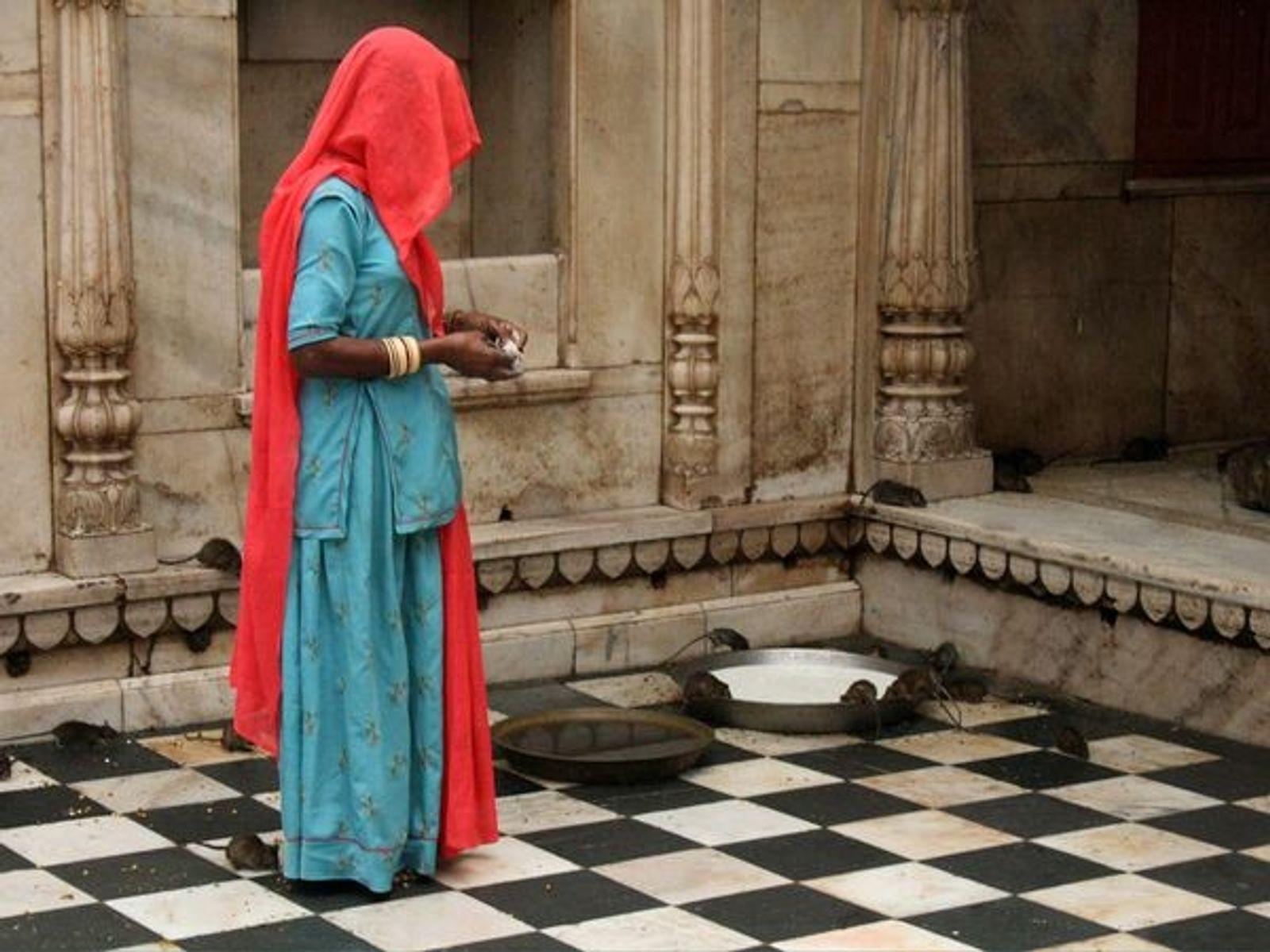 Mujeres solteras telegram